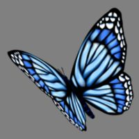 Butterfly Blue 04 Thumbnail