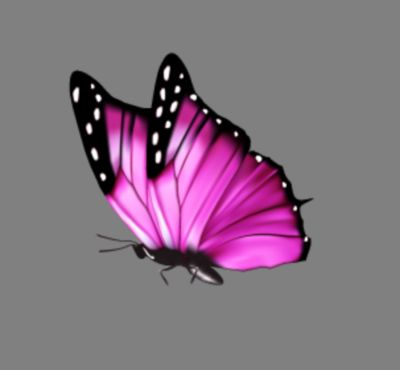 Butterfly Pink 01