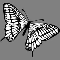 Butterfly 04 Thumbnail